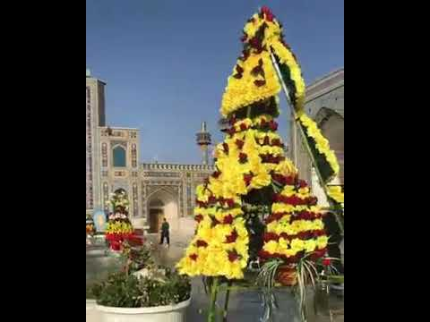 Looks So Adorable / Holy Shrine Of Imam ALI RAZA ع / Mashhad Iran