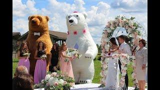 Медведи шоу на свадьбу в Минске, Беларуси. Dancing bears show