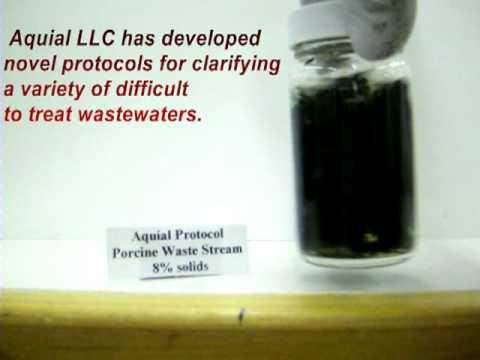 Aquial treatment of porcine waste stream