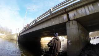 Steelhead Fishing Salmon River In Pulaski NY