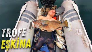 Kamp Yemeğini Denizden Çıkarıyoruz ! - Derinlerden Gelen Trofe Eşkina Balığı.