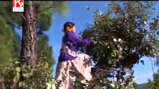 Mul Mul keku Hesni che tu' Garhwali Song by Anuradha Nirala