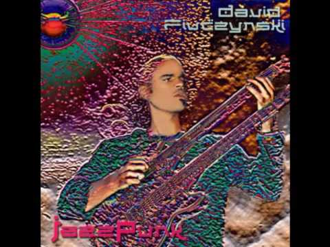David Fiuczynski - Bright size life