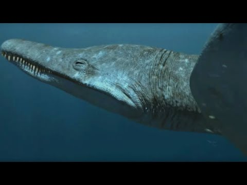 Predator X | Most powerful marine reptile ever | Planet Dinosaur | BBC