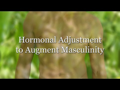 Hormonal Adjustment to Augment Masculinity (Subliminal)