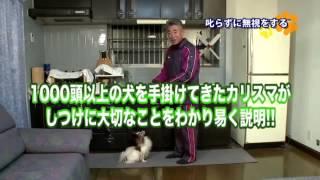 詳細はこちらの案内をご覧下さい→http://www.infotop.jp/click.php?aid=...