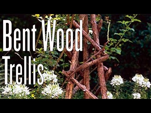 How to Create a Bent Wood Trellis