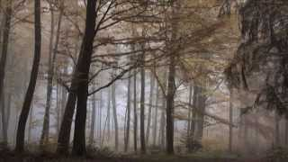 Nu mi-ai dat timp - Ludovico Einaudi - Due tramonti