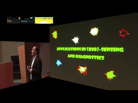 Christmas Lecture 2012: PhD Luis M. Liz- Marzán - Smart Composite Nanoparticles for Capture,...