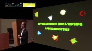 Christmas Lecture 2012: PhD Luis M. Liz- Marzán - Smart Composite Nanoparticles for Capture,...