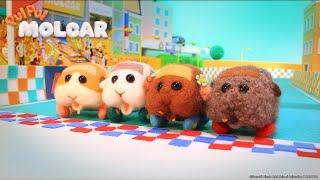 (New ED Version) PUI PUI MOLCAR - Episode 05 [Takarir Indonesia]