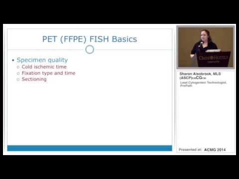 4 Hour FISH Workflow For FFPE, Blood, And Bone Marrow Specimens
