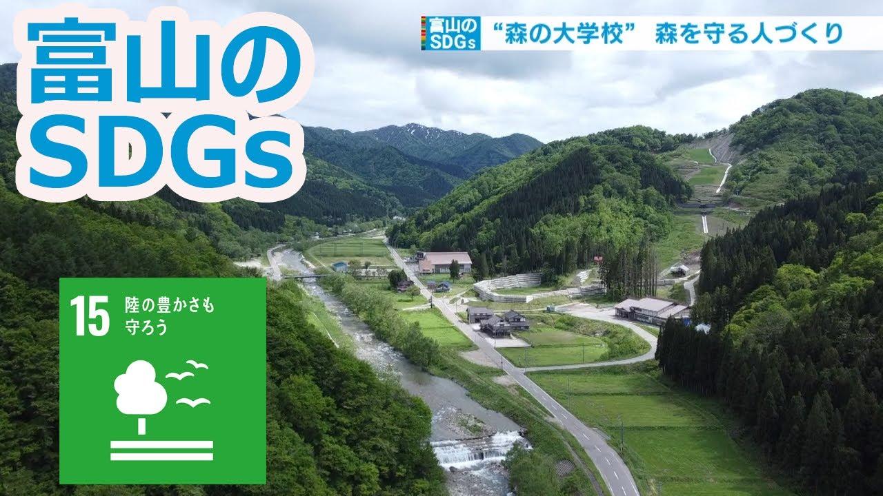 森の豊かさを伝える「TOGA森の大学校」(15.陸の豊かさも守ろう)【富山のSDGs】