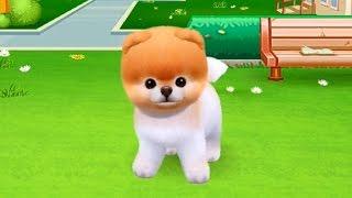 Бу  милая собачка  игровой мультик для детей! Boo The Worlds Cutest Dog Game  . Мобильные игры
