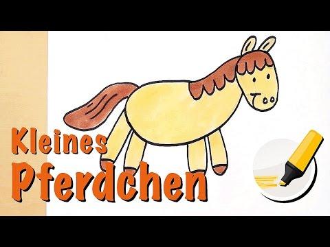 Pferd zeichnen/Pony zeichnen – Das Landsäugetier mit den größten Augen