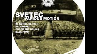 SVETEC - Im Gonna Be High (Original Mix)