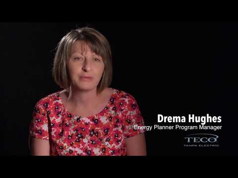 Dynamic Pricing Case Study: Tampa Electric
