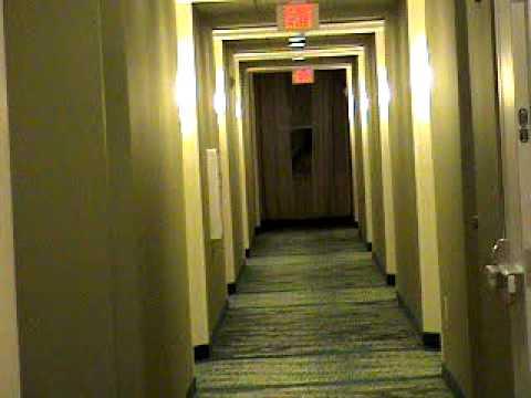 Full Hotel Tour: Springhill Suites by Marriott in Alexandria, VA.