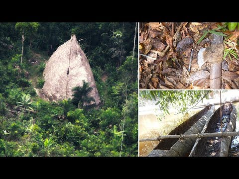 Uncontacted Amazon tribe are revealed for the first time in Vale do Javari - Brazil