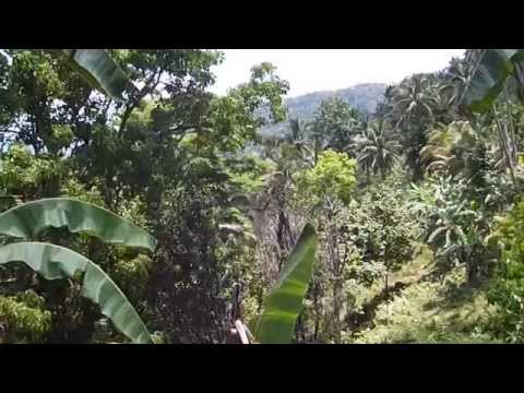 valencia lot for sale - Negros Oriental