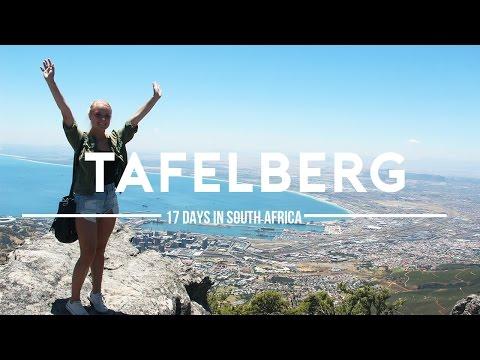 #8 HELIKOPTER VLUCHT OVER KAAPSTAD | 17 dagen in Zuid-Afrika
