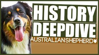 The History of the AUSTRALIAN SHEPHERD