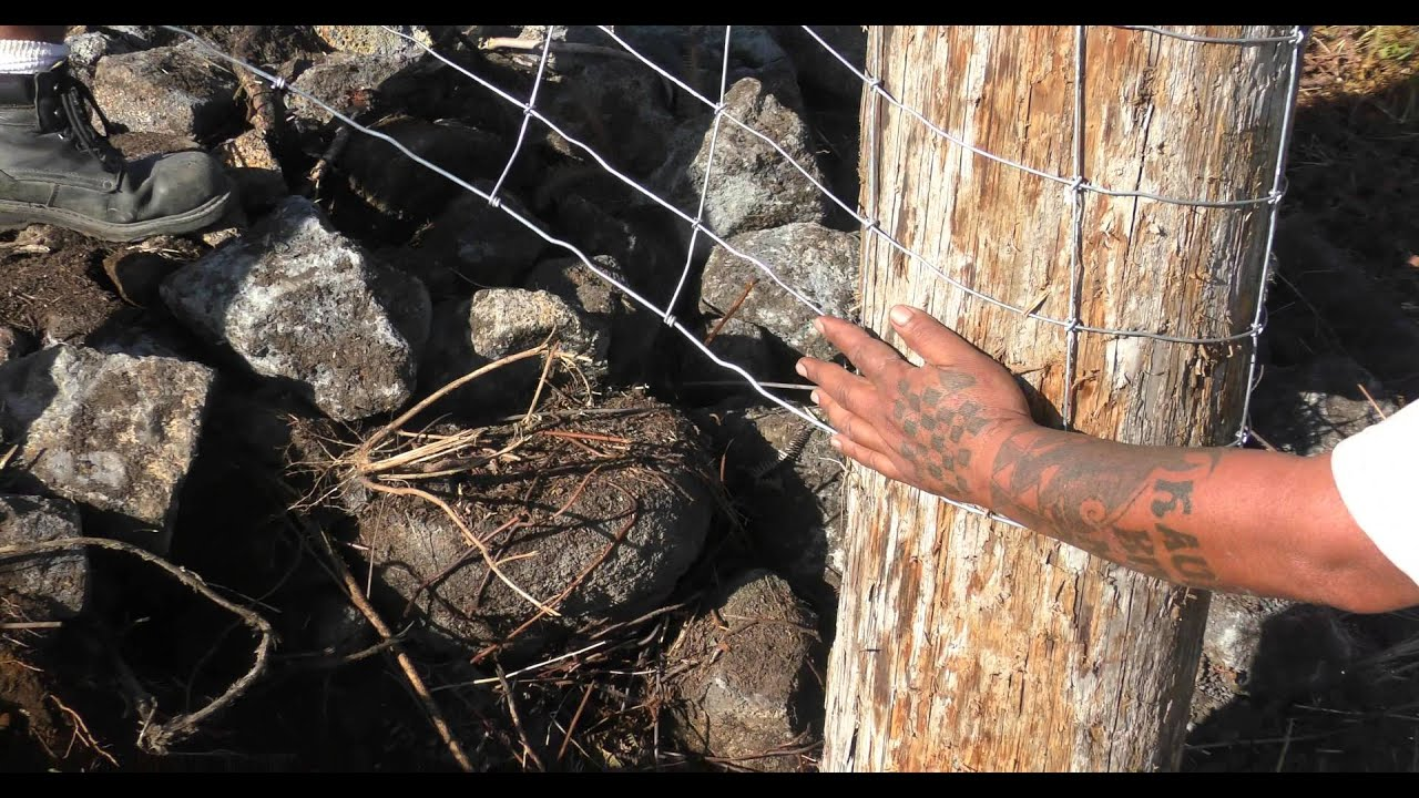 Fence Building On Lava Rock In Hawaii Youtube