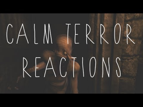 GAME REACTIONS   Amnesia: Calm Terror