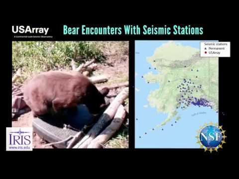 Earthquakes & Bears—Encounters With Seismic Stations In Alaska And Northwestern Canada