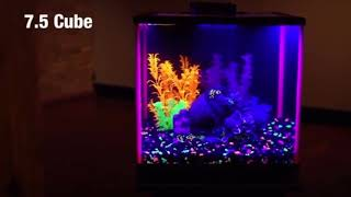 Aqueon Fish NeoGlow LED Aquarium Starter Kits