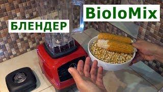 Профессиональный блендер Biolomix 2200 Вт – обзор + тест