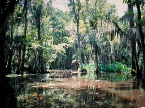 swamp deutsch