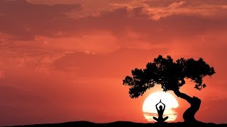 PERFECT INDIAN MUSIC for your YOGA PRACTICE || Yoga Music || Positive Energy Vibes || Namaste Music