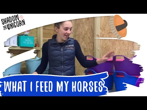 What I Feed My Horses Update! | Shadow The Unicorn