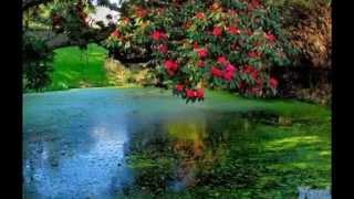 Смотри самые красивые картинки мира в одном видео)