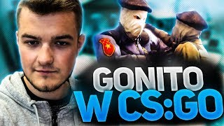 GONITO W CS:GO