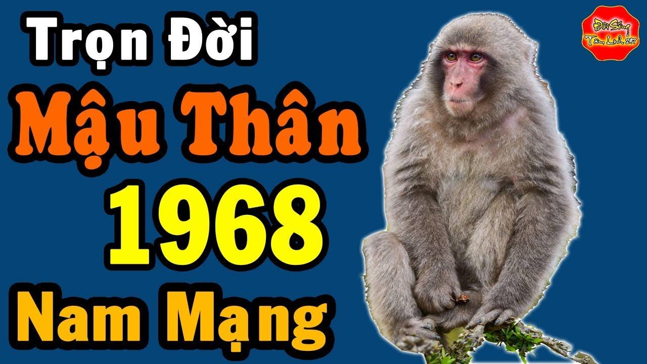 Tử Vi Trọn Đời Tuổi Mậu Thân Nam Mạng, Sinh Năm 1968 Đầy Đủ