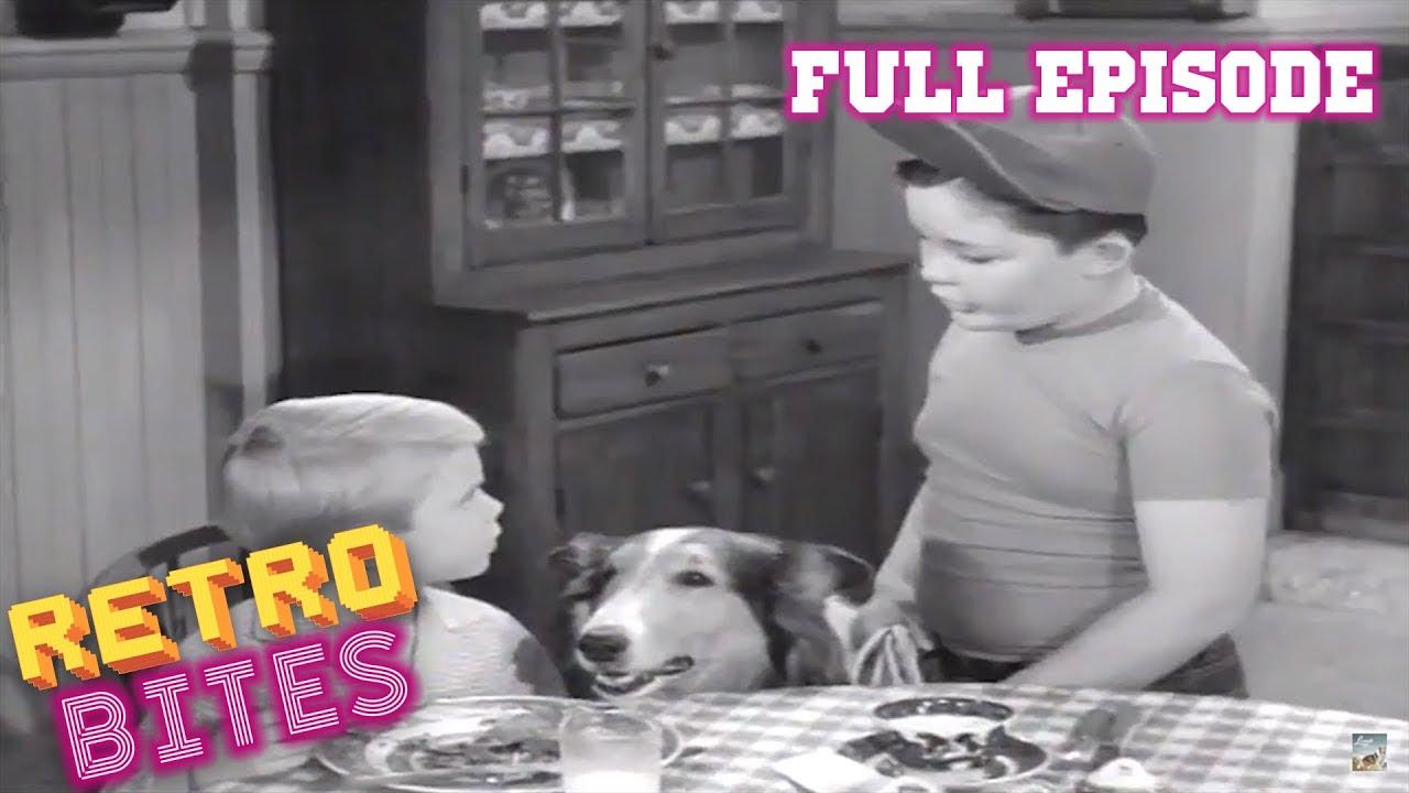 Download Lassie   Beholden   Lassie Full Episodes