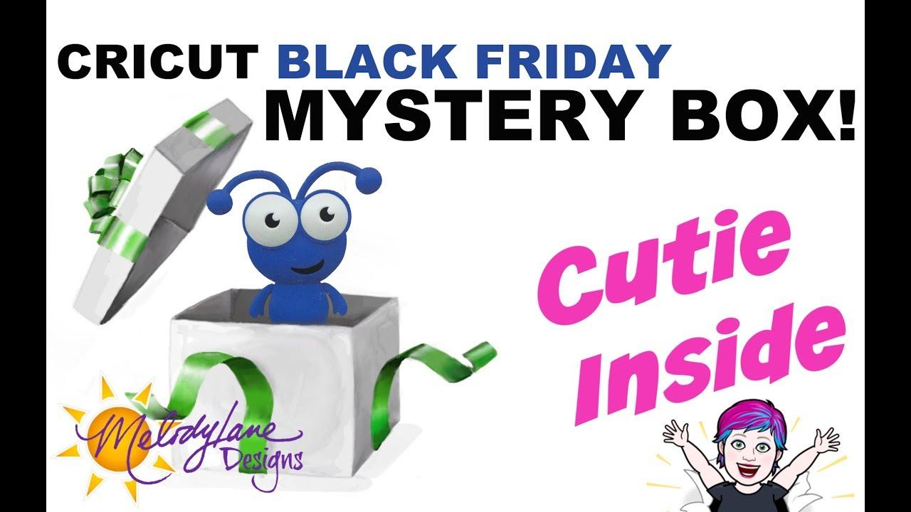 Black Friday Cricut Mystery Box -