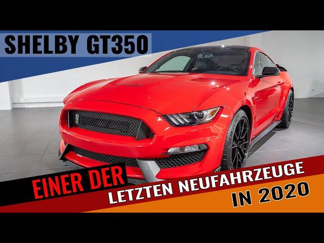Ford Mustang SHELBY GT350 | Einer der letzten... | Walkaround