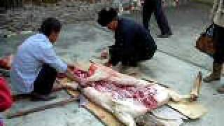 Pig disassemble in Yunnan China