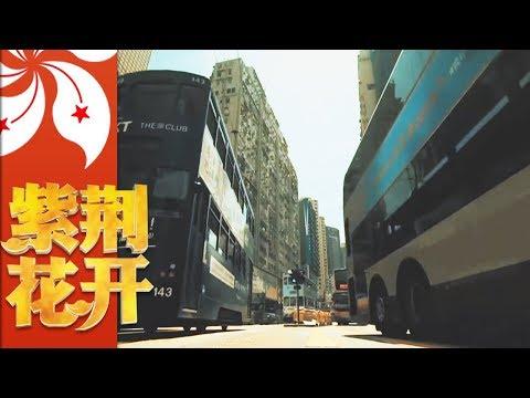 《紫荆花开》 第一集 开启归途 | CCTV