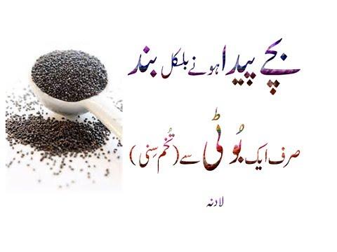 Hemp Seeds Bache Peda Hone Bilkul Band Srif Tukham Sinny Urdu Hindi Punjabi