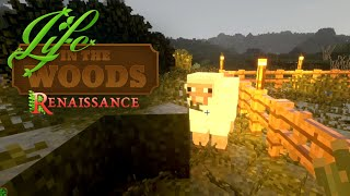 🔨 Minecraft 04 | Tierisches Tiergehege | Back to Nature | Life in the Woods Gameplay thumbnail
