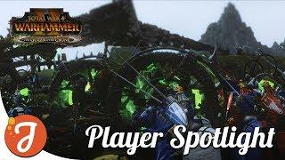 ShetlandApache | EVERCHOSEN Player Spotlight | Total War: WARHAMMER II