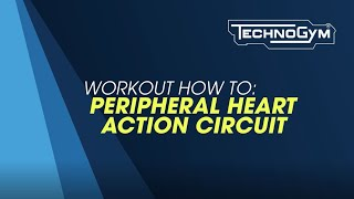 Peripheral Heart Action (PHA) Stabilization Endurance emphasis: Sequence 2