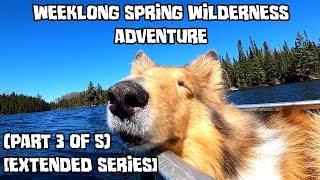 Weeklong Spring Wilderness Adventure With My Dog (Part 3 of 5) [Extended Series]