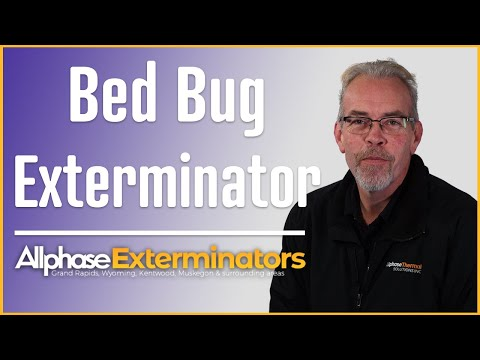 Bed Bug Extermination Grand Rapids MI - Allphase Exterminators