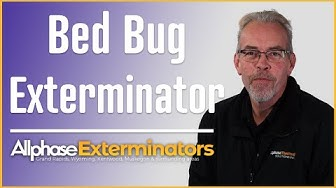 Bed Bug Extermination Grand Rapids MI - Allphase Exterminators