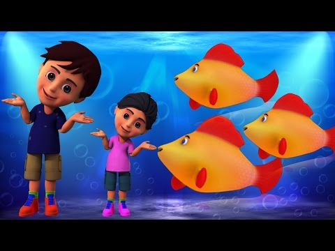 Machli Jal Ki Rani Hai | Hindi Rhymes | मछली जल की रानी है | Kids Tv India | Hindi Nursery Rhymes